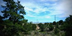 5.5 acres of land in #ChinoValley #Az with beautiful panoramic views ! Give us a call for more information (928)-533-9413.
