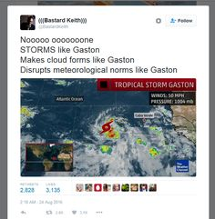 "egglorru: "" immaplatypus: "" ""I'M ESPECIALLY GOOD AT PRECIPITATING"" "" ""MY WHAT AN EYE THAT GASTON"" """