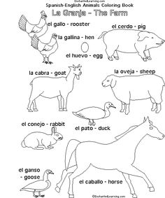 Farm Animals in Spanish: A Book to Print . Spanish Vocabulary, Spanish Language Learning, Teaching Spanish, The Farm, Spanish Lesson Plans, Spanish Lessons, Spanish Teacher, Spanish Class, Spanish Exercises