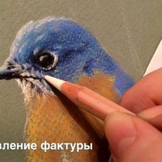 Инстаграм блокирует видео 🙄 поэтому без звука, извиняйте 🤗😁 Sketchbook Drawings, Pencil Art Drawings, Bird Drawings, Animal Drawings, Pastel Drawing, Pastel Art, Painting & Drawing, Pen And Watercolor, Watercolor Paintings