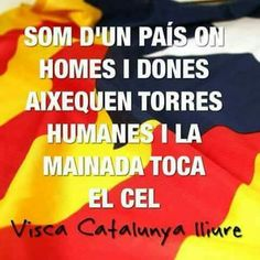 Image Cat, Freedom, Country, Amor, Barcelona City, Good Night Greetings, Be Nice, Souvenirs, Countries