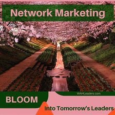 Today's training leads to tomorrow's leaders... #avon #countrygourmethome #dubli #directsales #entrepreneur #herbalife #itworks #jeunesse #mlm #marykay #networkmarketing #nwc #organogold #pamperedchef #scentsy #totallifechanges #wildtree #mlmtraining