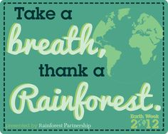 timely reminder for us all to nurture our beautiful planet ... what are you doing today and every day to help?