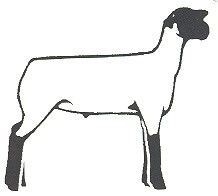 4-H Clip Art of Livestock | GA 4-H Cans Hunger