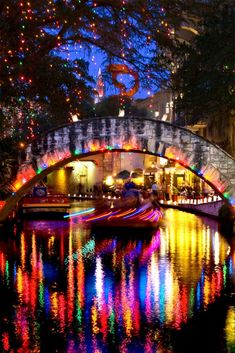 9 Must-see Texas Hill Country Holiday Light Trails Visit Texas, Visit Chicago, Road Trip Essentials, Road Trip Hacks, Road Trips, Texas Hill Country, Hilton Hotel London, Family Vacation Destinations, Family Vacations