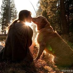 dog photoshoot with owner & dog photoshoot ; dog photoshoot with owner ; dog photoshoot ideas with owner ; Photos With Dog, Dog Pictures, Senior Pictures, Best Dog Photos, Camping Photography, Animal Photography, Photography Ideas, Human Photography, Dog Facts