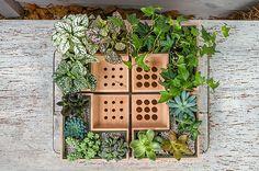 Eco Pot Doubles as a Planter and Desk Item Organizer | Home Design Lover