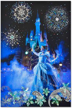 東京ディズニーリゾート,イマジニング・ザ・マジック,シンデレラ,清川あさみ/ Tokyo Disney RESORT Imagining the Magic /ASAMI KIYOKAWA