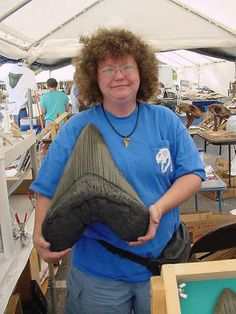 Ain't Photoshop grand! The largest Megalodon tooth found so far is 7 3/8 inches tall, root included. That scale would make this woman about 2 feet tall. Hmmmmmm!