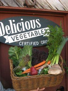 Organic farm, Whidbey Island