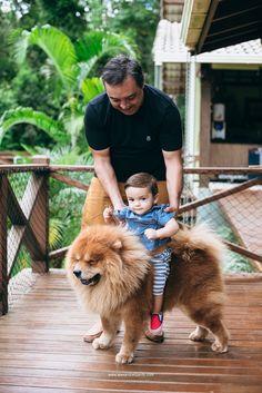 Criança brincanco com cachorro chow-chow Chow Chow, Marriage And Family, Wedding Photography, Diy Dog