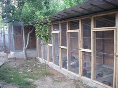 chicken coop shipping container - Google Search
