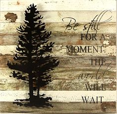 Be Still For A Moment. The World Will Wait - Reclaimed Wo... https://www.amazon.com/dp/B0199G0KUK/ref=cm_sw_r_pi_dp_x_lY.7yb834Y495