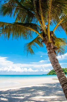 Beautiful tropical beach, with white sand, blue waters and colorful rocks by Constantin Stanciu / Summer Beach Pictures, Beach Photos, Dream Vacations, Vacation Spots, Beach Photography, Nature Photography, Beach Wallpaper, Photos Voyages, Tropical Beaches