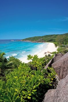 Surrounded by clear blue sea and its white sandy beaches, Seychelles island is already famous for its tropical beauty and it's postcards sceneries. Seychelles Tourism, Les Seychelles, Seychelles Beach, Seychelles Islands, Another World, End Of The World, Madagascar, Paradise Found, Island Beach