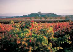 Navarrete en La Rioja