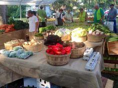 Wilmington Island Farmers' Market a bounty