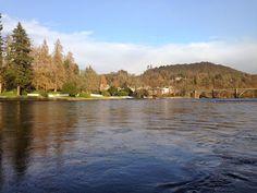 Dunkeld House Fishings: Salmon Fishing On The  River Tay