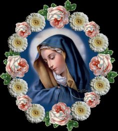 Bendita sois vós, Maria,  Entre as mulheres da terra E voss'alma só encerra Doce imagem d'alegria.   Mais radiante do que a luz E bendito, oh Santa Mãe É o fruto que provém Do vosso ventre, Jesus!