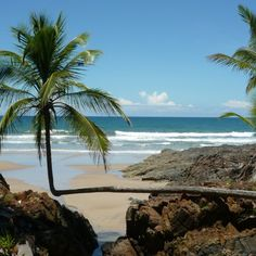 Na Bahia que é meu lugar Tem meu chão, tem meu céu, tem meu mar...