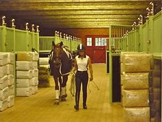 10 habits of effective dressage riders