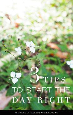 My morning routine tips for starting the day right! Don't worry - this is not about being perfect...or a morning person! Yep, whether you're a morning person or not, starting the day on a positive note is a great strategy for cultivating more intention, motivation and happiness for the day ahead. Click to read the full article!