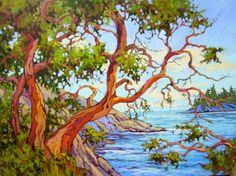 arbutus trees Amanda Jones - local girl!