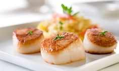 Groupon - Italian Dinner for Two or Four at Adriatico (Up to 45% Off) in Gulf Gate. Groupon deal price: $17