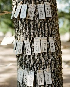 Secret Sister at camp??  clothes pin with each girls name?  but if it rains.... put it in the cabin! maybe on the bunk bed?