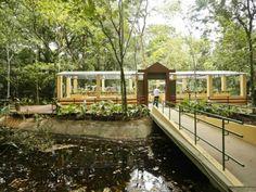Ônibus vão levar visitantes do Parque da Jaqueira, na Zona Norte da cidade, até o jardim Botânico, todos os domingos de janeiro e fevereiro