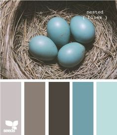Love these tones together . . . .and to think I used to call them sand and sea when all along they were bird's nest! | future home | Pinterest | Color Schemes,…