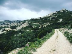 Brève #alpilles #gravelride #gravelbike #opentheroad #france #gravel  We don't care where the road is ending as long as the journey is a gift for gravelbike. #alpilles #gravelride #gravelbike #opentheroad #france #gravel http://ift.tt/1U45IOE  Brève #alpilles #gravelride #gravelbike #opentheroad #france #gravel  contact@caminade.eu (Caminade) : April 19 2016 at 09:39AM http://ift.tt/1U45JSP