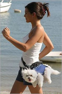 Maybe this will be you one day Elizabeth..when Micah gets you that Maltese you dream of having!Hes a sweetheart,I know he'll get it for you:D