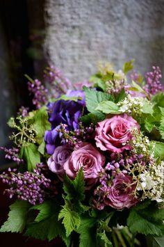 hortensia, rose, viburnum
