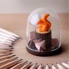 Taille-crayon écureuil rongeur