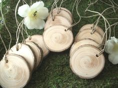 Aromatic White Spruce Wood Tree Branch Gift Tags ... Lot Of 12 ... Rustic Tags…