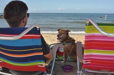 After PETA rescued a terminally ill dog from a life on a chain, she spent her final days doing all the things that she'd never had a chance to do before. Dog Bucket List, Try Not To Cry, Dog Beach, Peta, Dog Life, Final Days, Crying, Dogs, Animals