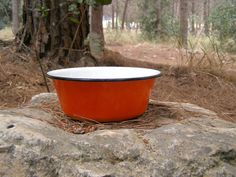 Hey, I found this really awesome Etsy listing at http://www.etsy.com/listing/112104494/farmhouse-orange-enamel-bowl-soviet