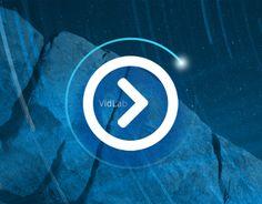 VidLab - Video Editor