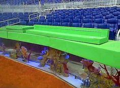Aquariums have been installed as the backstop in the new Miami Marlins baseball stadium. Animal rights activists say constant vibrations and noise will upset the fish.