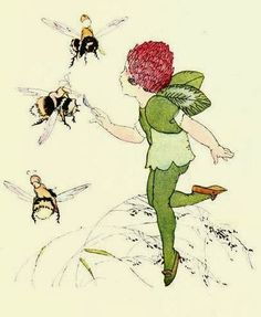 Janet Laura Scott's Illustrations from 'Wildflower Children,The Playmates of The Fairies'. by Elizabeth Gordon. A Volland Book