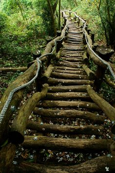 wooden path stairs