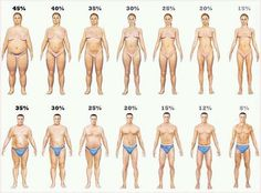 BMI or Body Fat Percentage-Which is better