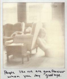 New Quotes Lyrics Songs Taylor Swift Website Ideas Taylor Swift Quotes, Taylor Swift Fan, Taylor Alison Swift, Taylor Swift Website, Ethel Kennedy, Music Lyrics, Photo Galleries, Queens, Polaroids
