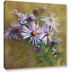 Antonio Raggio 'Flowers in Focus VI' Gallery-Wrapped Canvas, Size: 24 x 24, Green