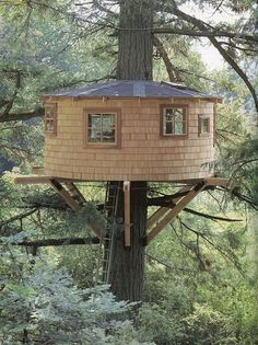 Awesome Treehouse Masters Design Ideas that will Make You Dream to Have It - DecOMG Cool Tree Houses, Tree House Designs, Cottage, Tree Tops, Play Houses, Tiny House, Building A House, Gazebo, Backyard