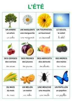 Learn French Videos Tips Student French Videos Phrases French Kids, French Class, French Lessons, Preschool Themes, Montessori Activities, Preschool Art, French Education, Kids Education, How To Speak French