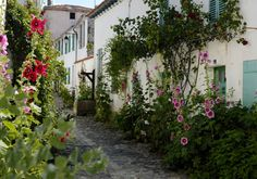Flower power: Hollyhocks create a colourful scene in the town of La Flotte on Ile de Re France Europe, South Of France, Yosemite National Park, National Parks, Nature Architecture, Holidays France, Beau Site, Destinations, Hollyhock