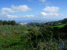 #Spain #Canarias #GranCanaria Mirador Las Pellas
