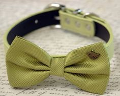 Green dog bow tie collar-Birds Charm, Greenery